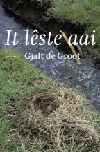 Gjalt de Groot It lêste aai