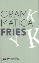 Jan Popkema Grammatica Fries