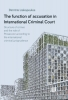 Dimitris  Liakopoulos,The function of accusation in International Criminal Court