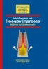 Maarten  Geerdes, Rénard  Chaigneau, Ivan  Kurunov, Oscar  Lingiardi,Inleiding tot het hoogovenproces