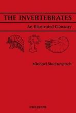 Stachowitsch, Michael The Invertebrates
