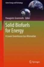 Grammelis, Panagiotis Solid Biofuels for Energy