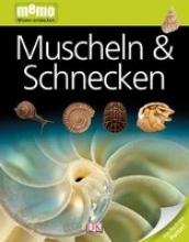 Arthur, Alex Muscheln & Schnecken