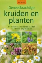 Elfrune WENDELBERGER , Veldgids - Geneeskrachtige kruiden en planten