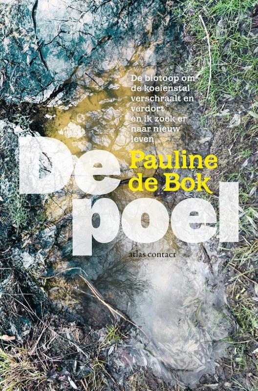 Pauline de Bok,De poel
