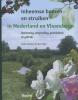 Bert  Maes,Inheemse bomen en struiken in Nederland en Vlaanderen