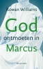 <b>R  Williams</b>,God ontmoeten in Marcus