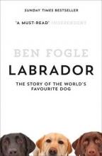 Ben Fogle Labrador