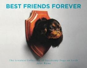 D. Powe J., Best Friends Forever