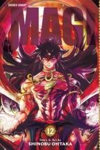 Shiina, Karuho Magi: The Labyrinth of Magic, Vol. 12