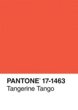 Pantone Inc Pantone Tangerine Tango Color of the Year Journal