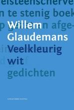 Willem  Glaudemans Veelkleurig wit