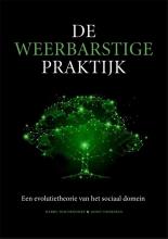Joost Hoekman Harry Woldendorp, De weerbarstige praktijk
