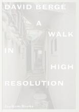 David Bergé, Marcelo Rezende, Dieter Roelstraete David Bergé. A Walk in High Resolution