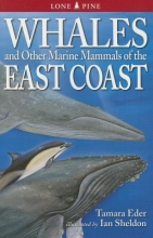 Tamara Eder Whales and Other Marine Mammals of the East Coast