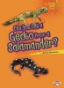 Silverman, Buffy,Can You Tell a Gecko from a Salamander?