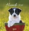 ,Hunde 2018 Postkartenkalender