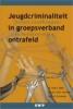 <b>B. Beke, A. van Wijk en H. Ferwerda</b>,Jeugdcriminaliteit in groepsverband ontrafeld