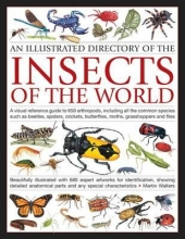 Walters, Martin An Illustrated Directory of the Insects of the World