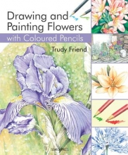 Friend, Trudy Drawing and Painting Flowers With Coloured Pencils