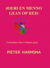Pieter Harmsma , Joeri en Menno gean op reis