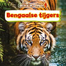 Nancy Dickmann , Bengaalse tijgers