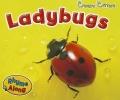 Smith, Sian,Ladybugs