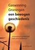 Herman Damveld,Gaswinning Groningen