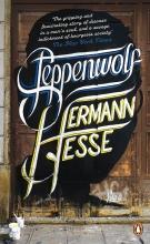 Hermann,Hesse Steppenwolf