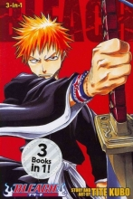 Kubo, Tite Bleach (3-in-1 Edition), Vol. 1