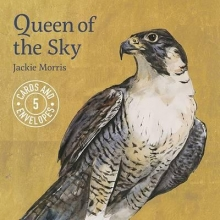 Morris, Jackie Jackie Morris Queen of the Sky Notecards Pack 1