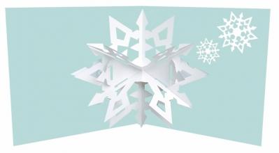 2totango Snowflakes 03
