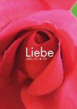 Liebe. konkursbuch 52