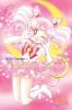 Takeuchi, Naoko,Sailor Moon 6