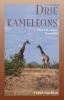 Frank van Rijn,Drie kameleons