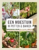 <b>Philippe  Asseray</b>,Een moestuin in potten en bakken