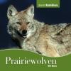 Mara,Dierenfamilies (10-16 jaar) Prairiewolven