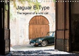 Petra Sagnak Jaguar E-Type 2019