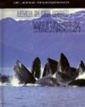 Louise Spilsbury Richard Spilsbury, leven in een groep walvissen