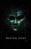 Neuvel Sylvain, Waking Gods