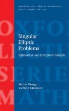 Marius (Professor of Mathematics Romanian) Ghergu,   Vicentiu (Professor of Mathematics Romanian) Radulescu Singular Elliptic Problems