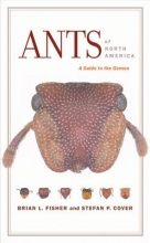 Brian L., Ph. D. Fisher,   Stefan P., Ph. D. Cover Ants of North America