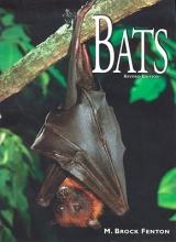 Fenton, M. Bats