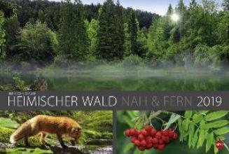Wald nah und fern Edition - Kalender 2019