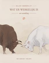 Nelleke Noordervliet , Wat er werkelijk is