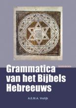 A.E.M.A. Vrolijk , Grammatica van het Bijbels Hebreeuws