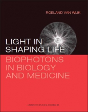Roeland van Wijk , Light in shaping life