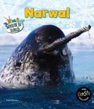 Katie  Marsico Mijn eerste docuboek - Narwal