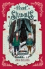 John Bellairs,The Figure in the Shadows - The House With a Clock in Its Wa