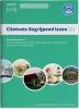 ,Citotoets Begrijpend Lezen 2 Oefenboeken: groep 5 en 6
